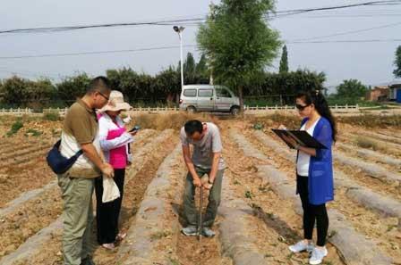 兰州农业信息网 红古区农牧局进行测土配肥土壤样品采集工作